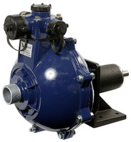 10.1314 FK single impeller pump pedestal mounted .jpg