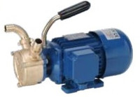 112.51415000 Liverani EP 50 bronze electric pump.jpg