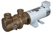 112.MO-B bronze single screw pump.jpg