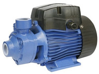 68.802788 Bianco cast iron PT pump.jpg