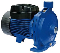 68.802804 Bianco cast iron centrifugal pump.jpg